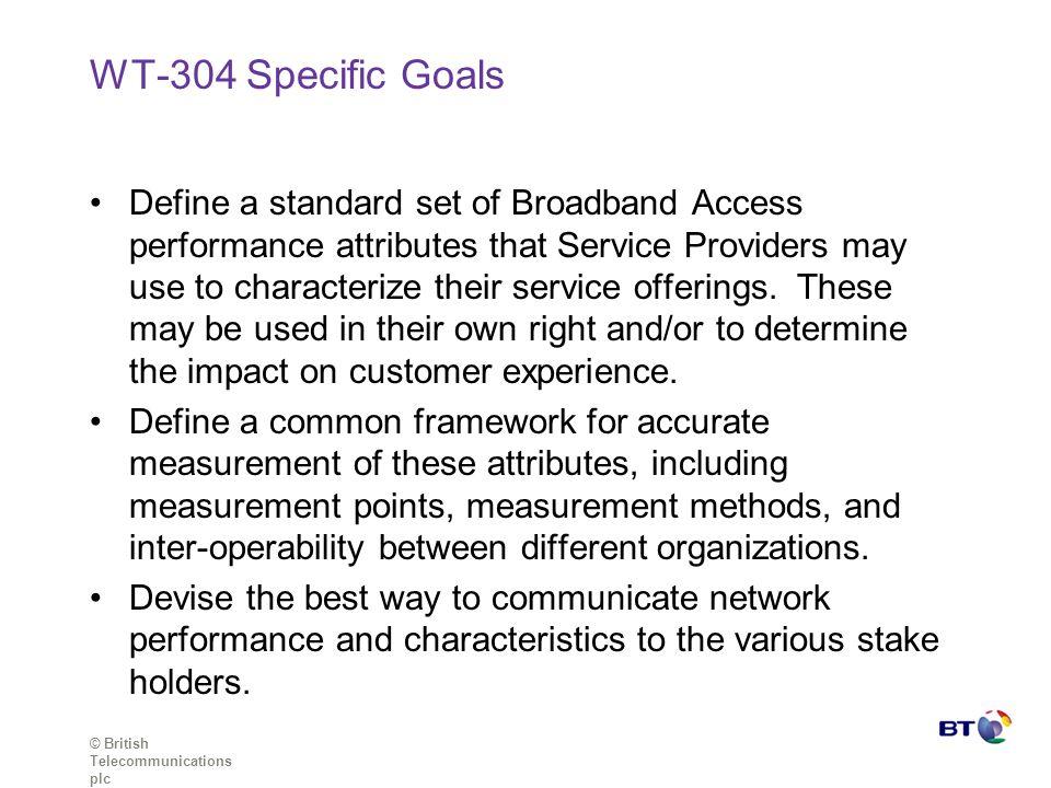 WT-304 Specific Goals