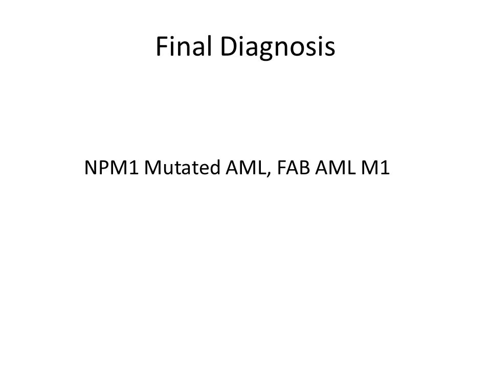 NPM1 Mutated AML, FAB AML M1