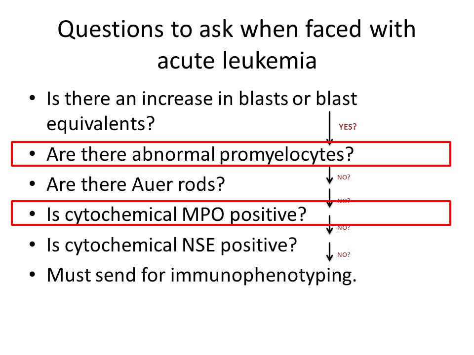 Questions to ask when faced with acute leukemia