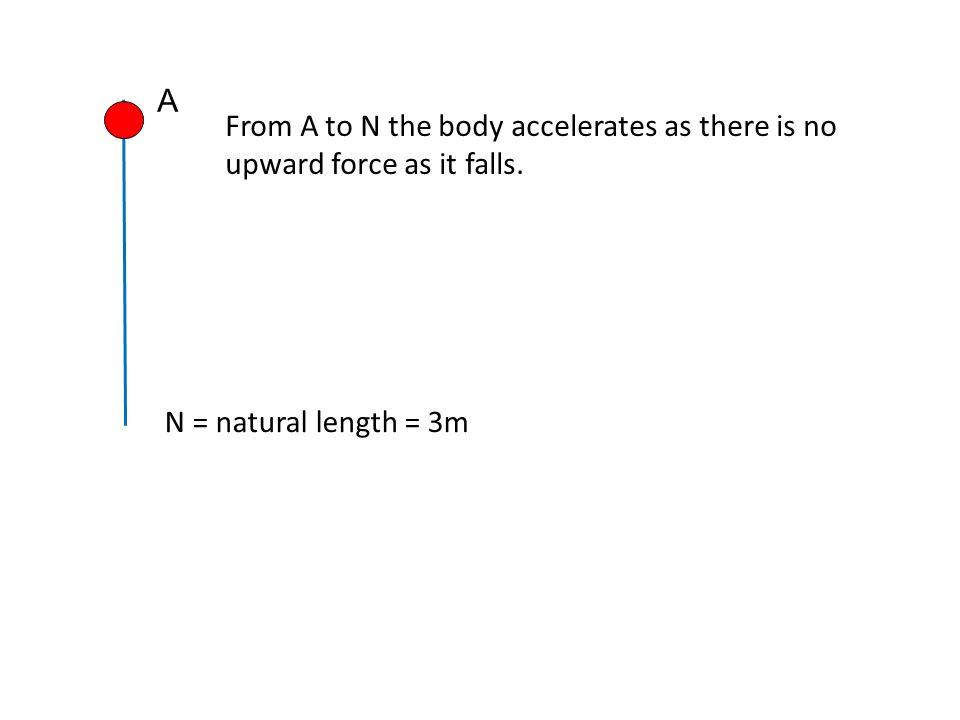 A From A to N the body accelerates as there is no upward force as it falls. N = natural length = 3m