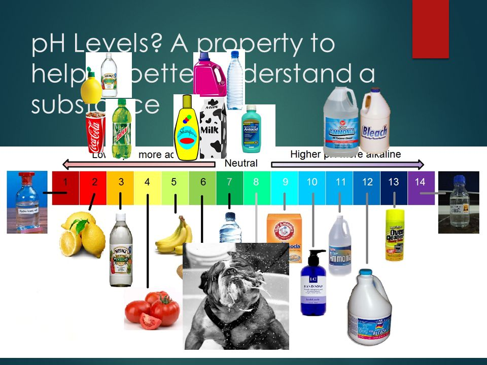 pH Levels A property to help us better understand a substance