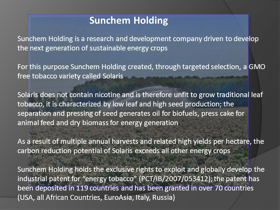 Sunchem Holding Sunchem Holding is a research and development company driven to develop the next generation of sustainable energy crops.