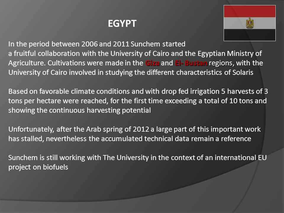 EGYPT In the period between 2006 and 2011 Sunchem started