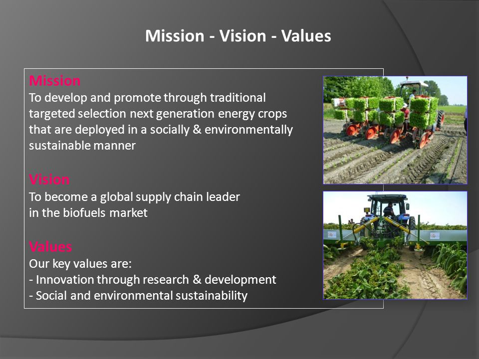 Mission - Vision - Values