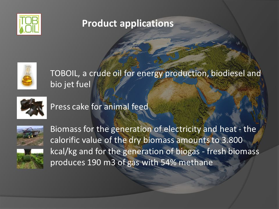 Product applications TOBOIL, a crude oil for energy production, biodiesel and bio jet fuel. Press cake for animal feed.