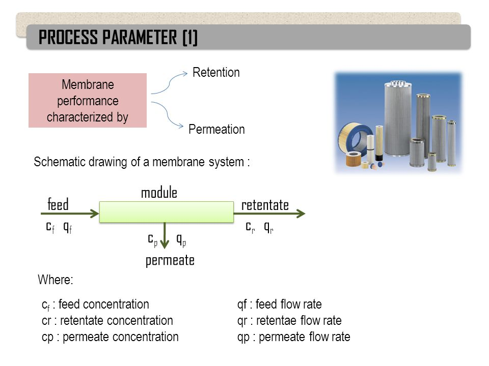 Membrane performance characterized by