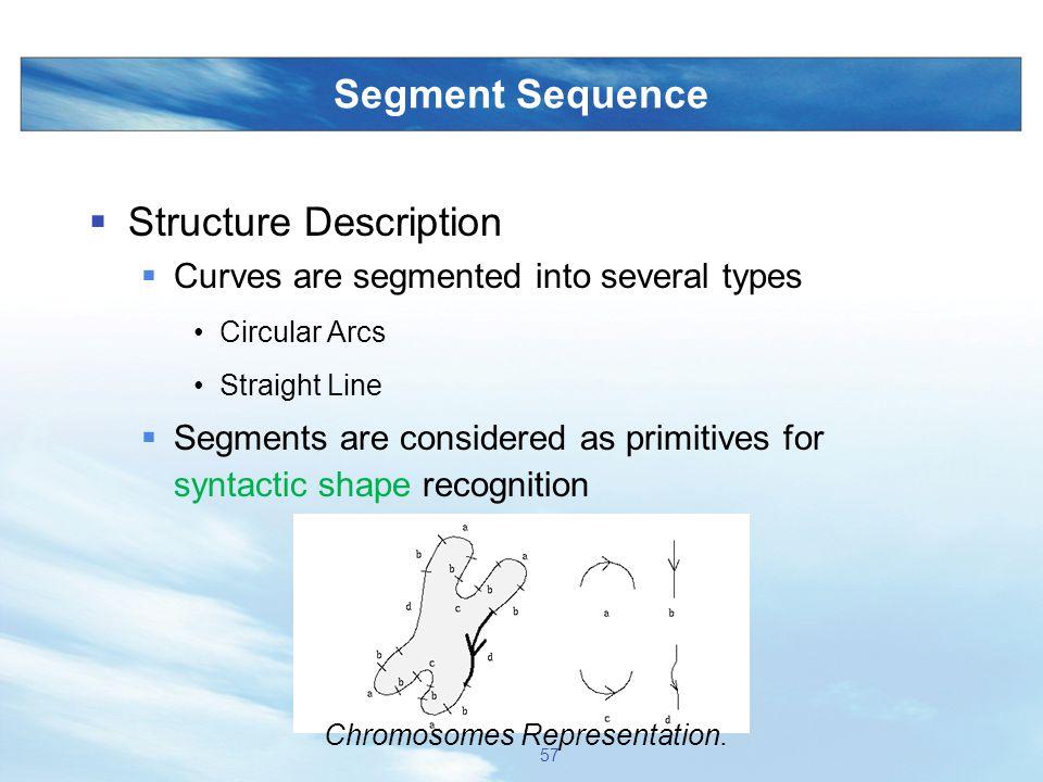 Chromosomes Representation.