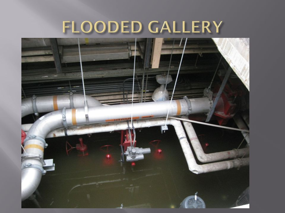 FLOODED GALLERY