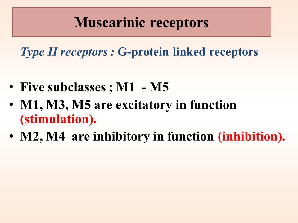 Muscarinic receptors Five subclasses ; M1 - M5
