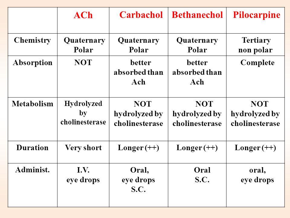 Pilocarpine Bethanechol Carbachol ACh