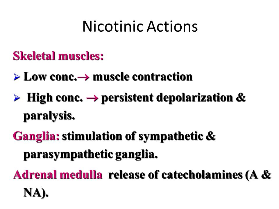 Nicotinic Actions Skeletal muscles: Low conc. muscle contraction