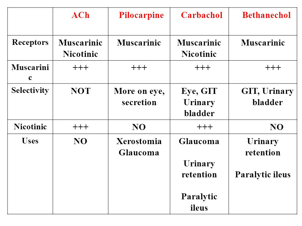 Bethanechol Carbachol Pilocarpine ACh Muscarinic Nicotinic +++