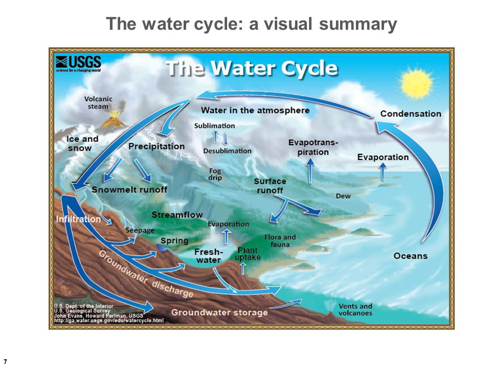 The water cycle: a visual summary