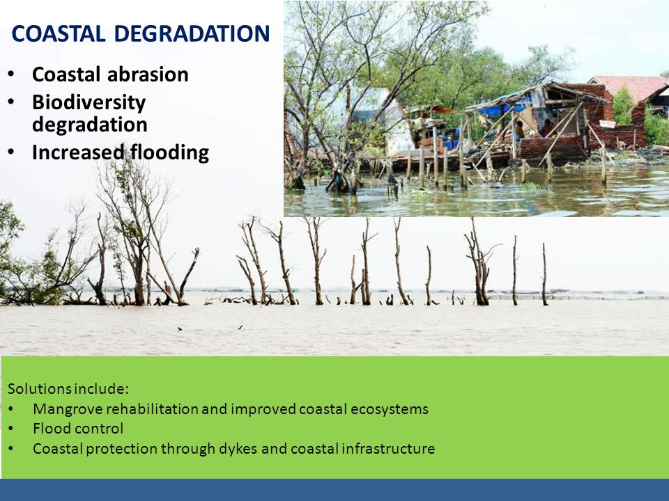 COASTAL DEGRADATION Coastal abrasion Biodiversity degradation