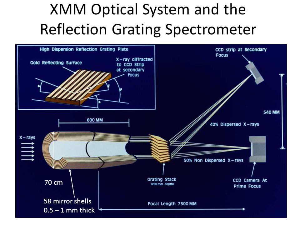 XMM Optical System and the Reflection Grating Spectrometer