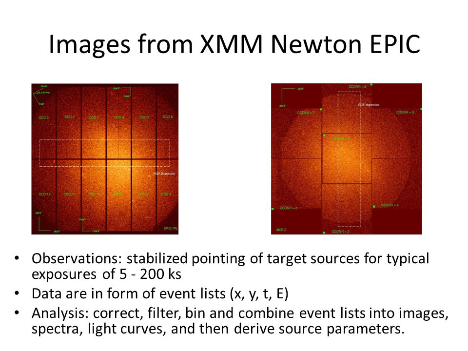 Images from XMM Newton EPIC