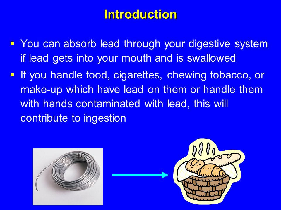 Introduction You can absorb lead through your digestive system if lead gets into your mouth and is swallowed.