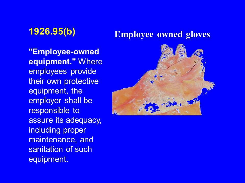 1926.95(b) Employee owned gloves