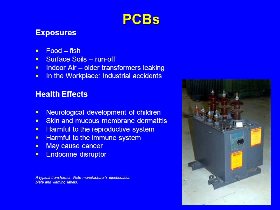 PCBs Exposures Health Effects Food – fish Surface Soils – run-off