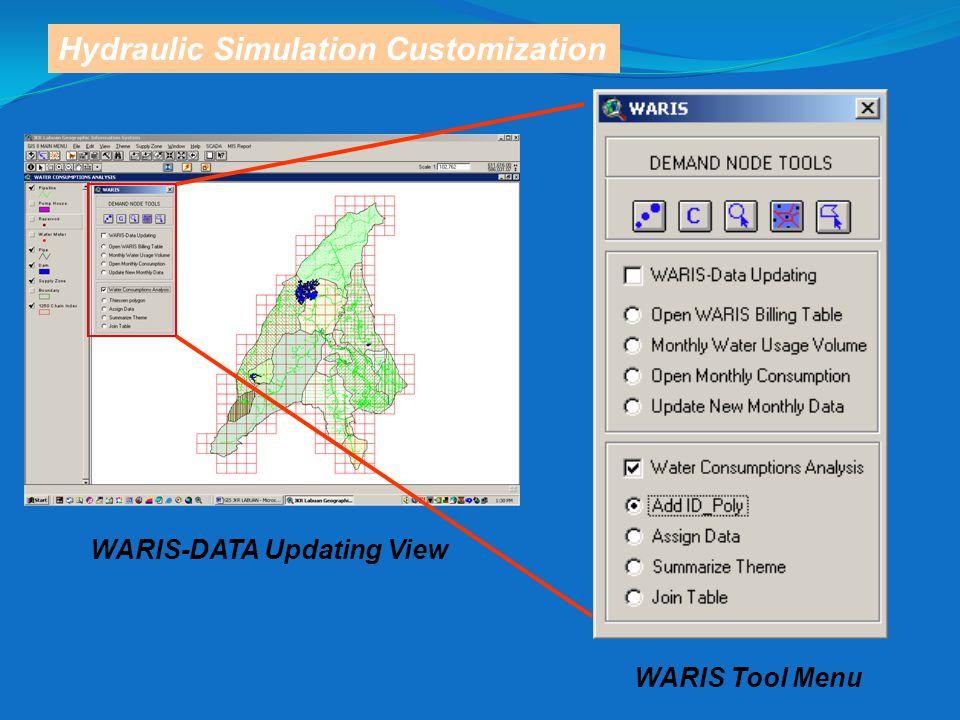Hydraulic Simulation Customization