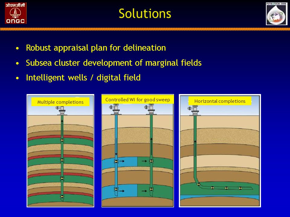 Solutions Robust appraisal plan for delineation