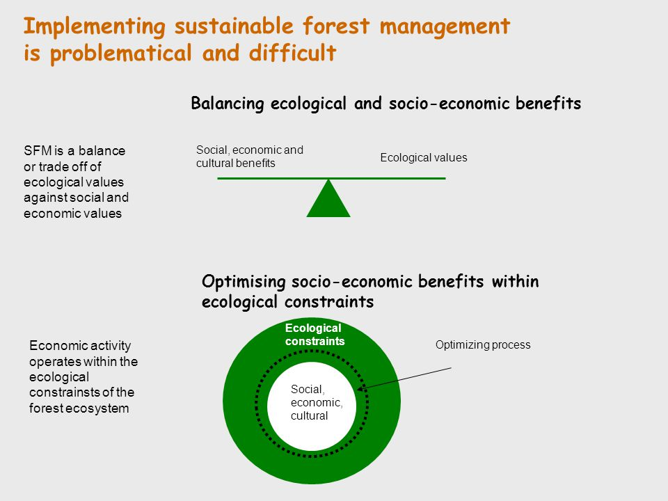 Implementing sustainable forest management is problematical and difficult
