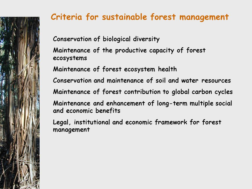 Criteria for sustainable forest management