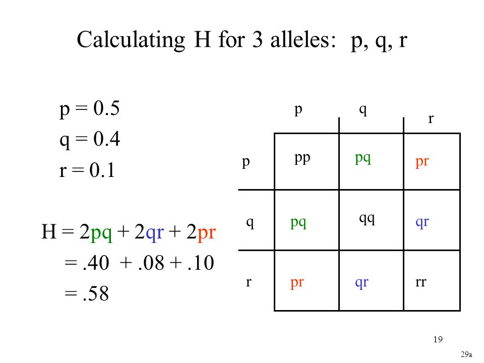 Calculating H for 3 alleles: p, q, r