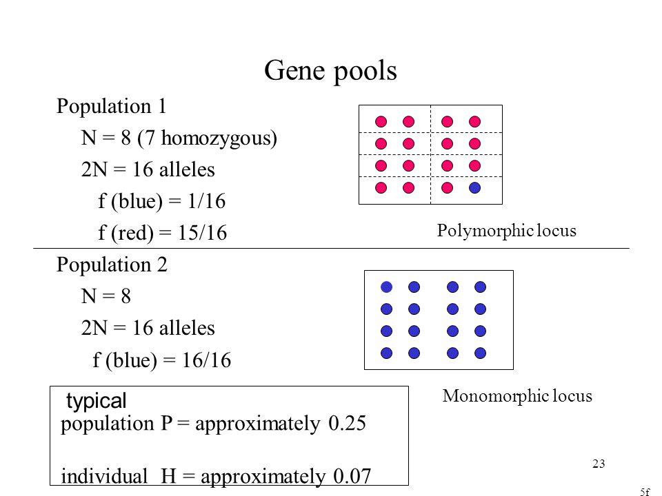 Gene pools Population 1 N = 8 (7 homozygous) 2N = 16 alleles