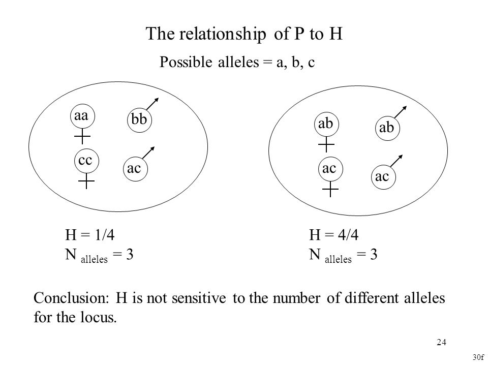 The relationship of P to H