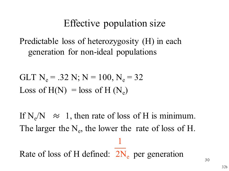 Effective population size