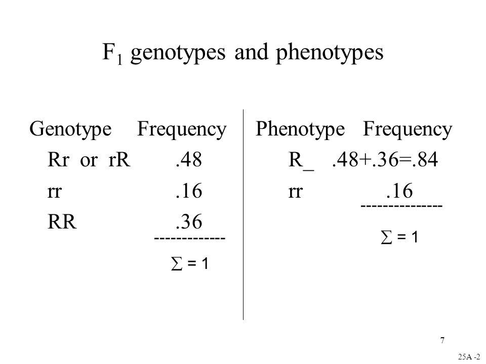 F1 genotypes and phenotypes