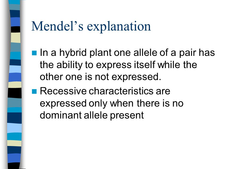Mendel's explanation In a hybrid plant one allele of a pair has the ability to express itself while the other one is not expressed.
