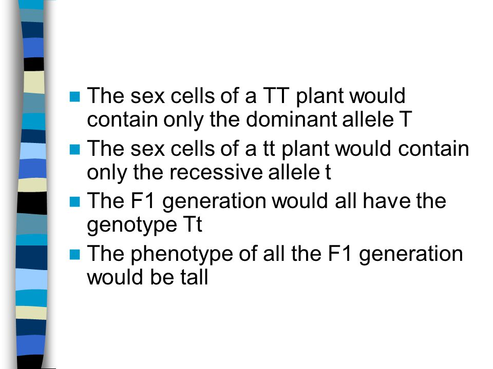 The sex cells of a TT plant would contain only the dominant allele T