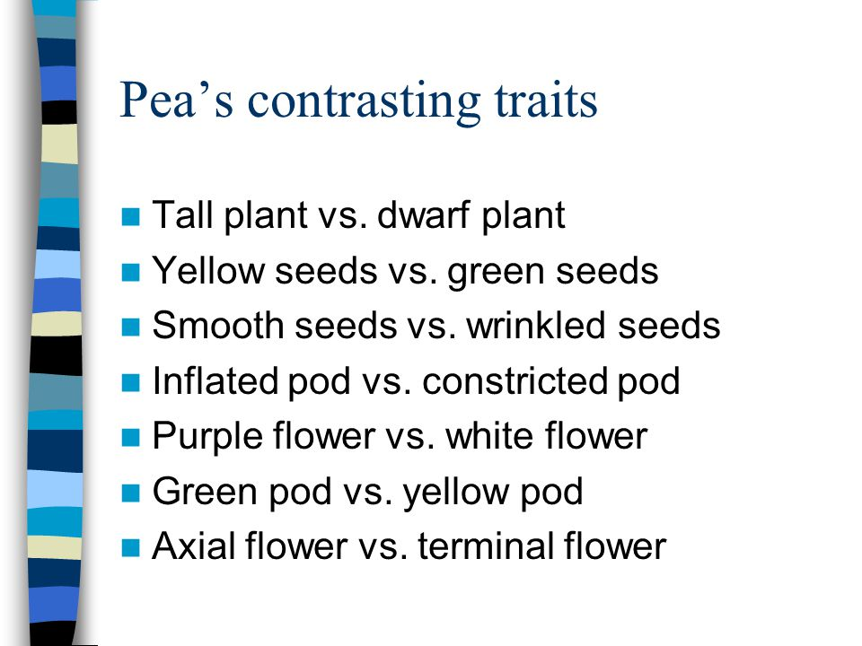 Pea's contrasting traits