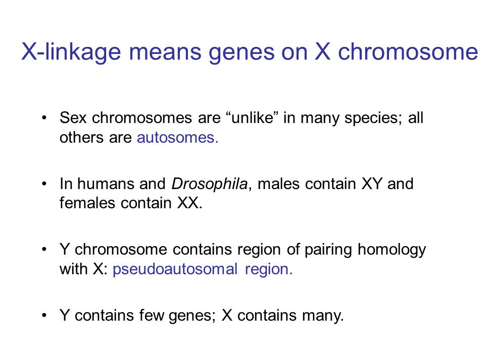 X-linkage means genes on X chromosome