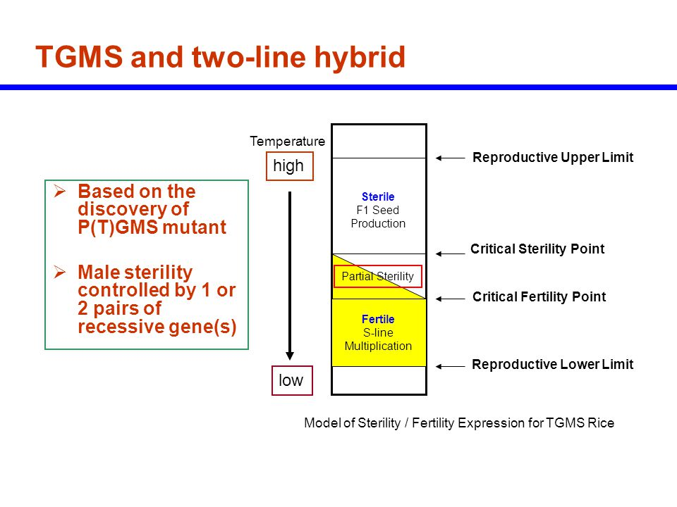 TGMS and two-line hybrid