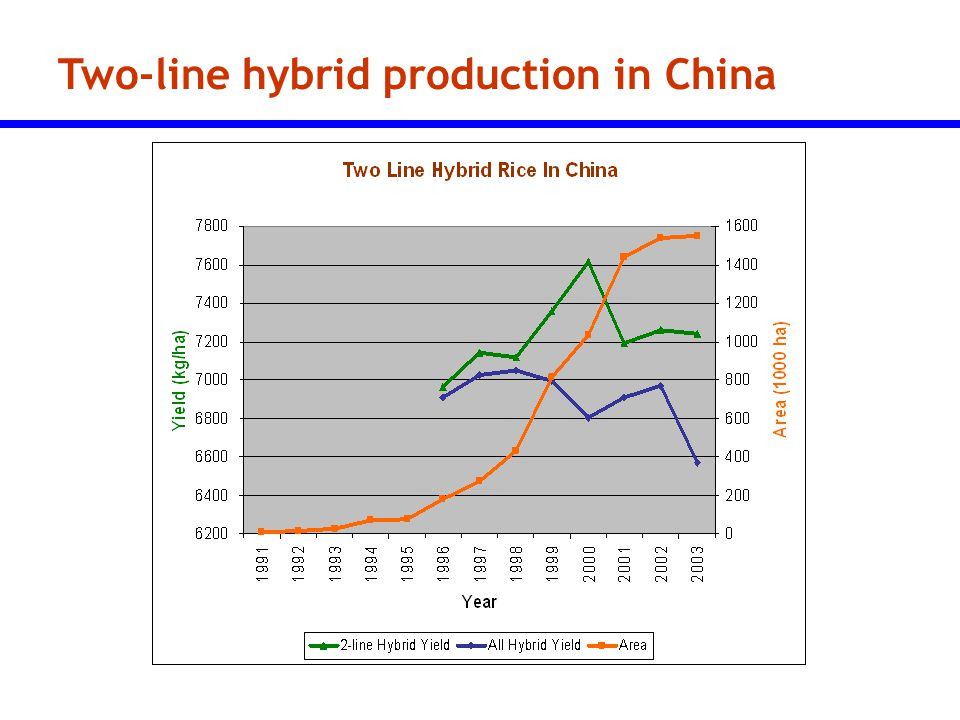 Two-line hybrid production in China