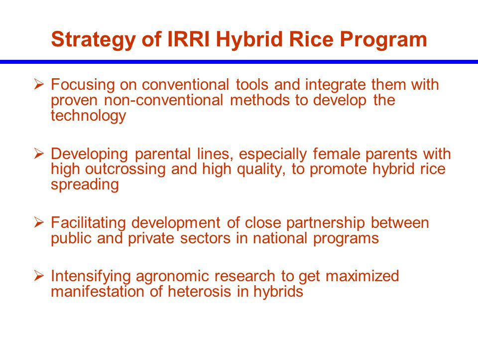 Strategy of IRRI Hybrid Rice Program