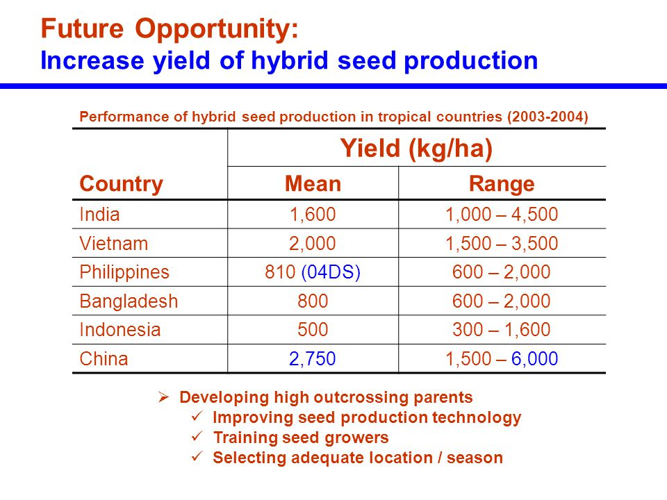 Future Opportunity: Increase yield of hybrid seed production