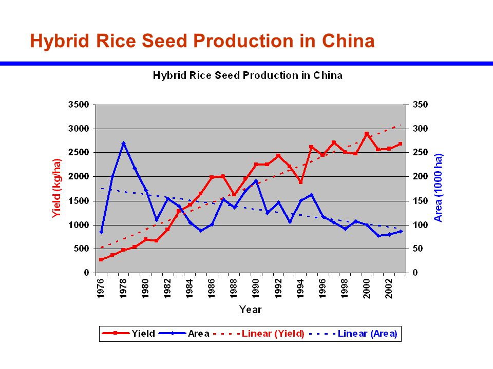 Hybrid Rice Seed Production in China