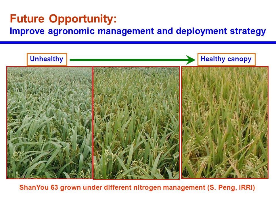Future Opportunity: Improve agronomic management and deployment strategy