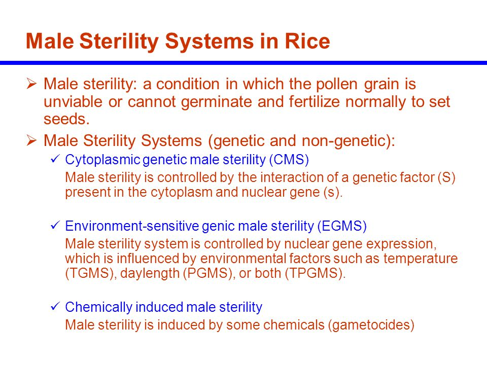 Male Sterility Systems in Rice
