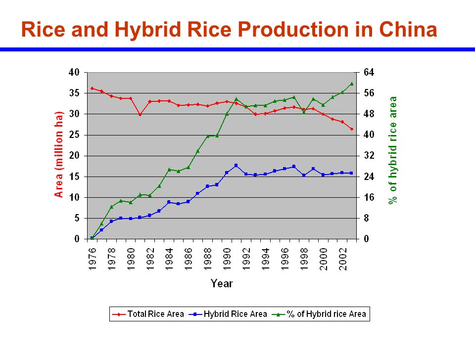 Rice and Hybrid Rice Production in China