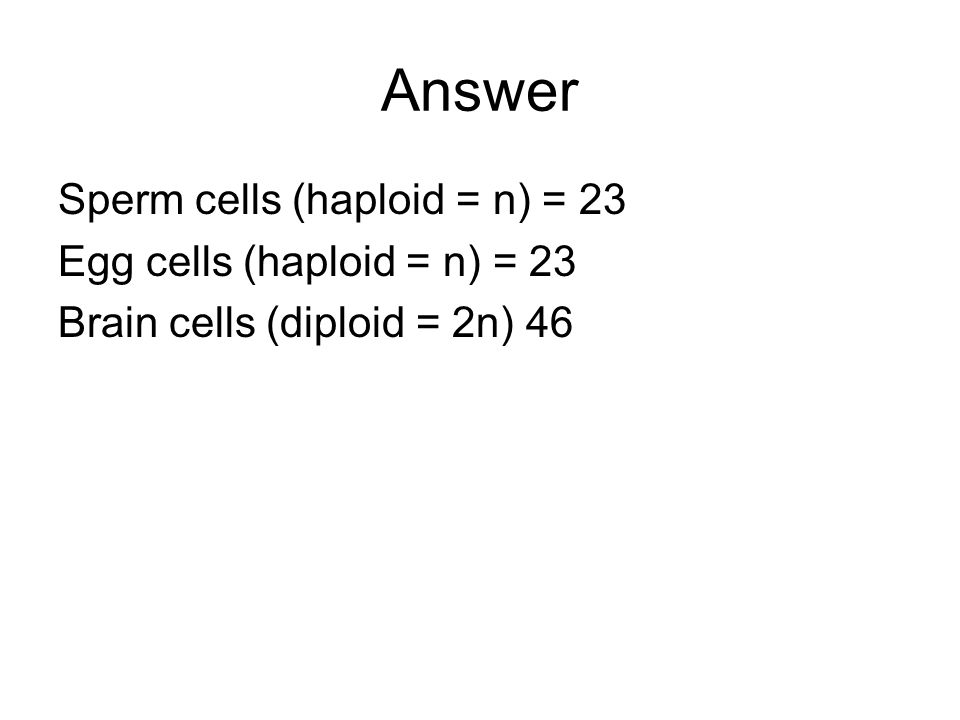 Answer Sperm cells (haploid = n) = 23 Egg cells (haploid = n) = 23
