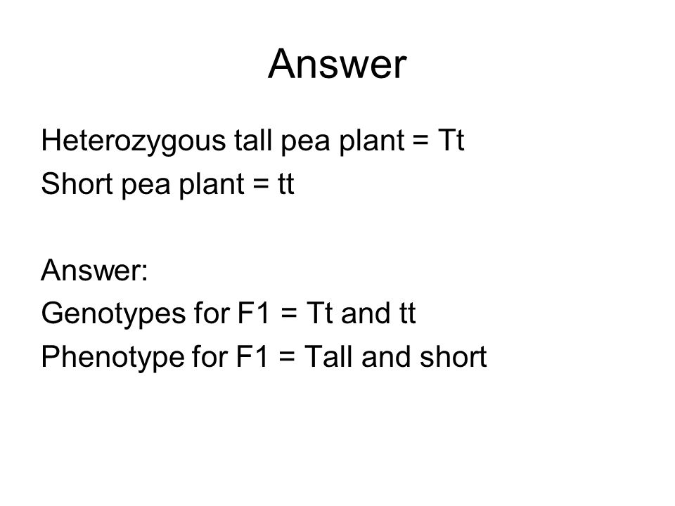 Answer Heterozygous tall pea plant = Tt Short pea plant = tt Answer: