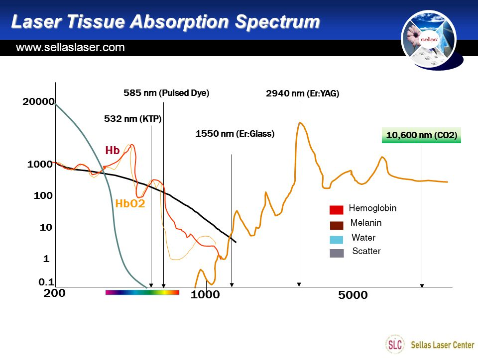 Laser Tissue Absorption Spectrum