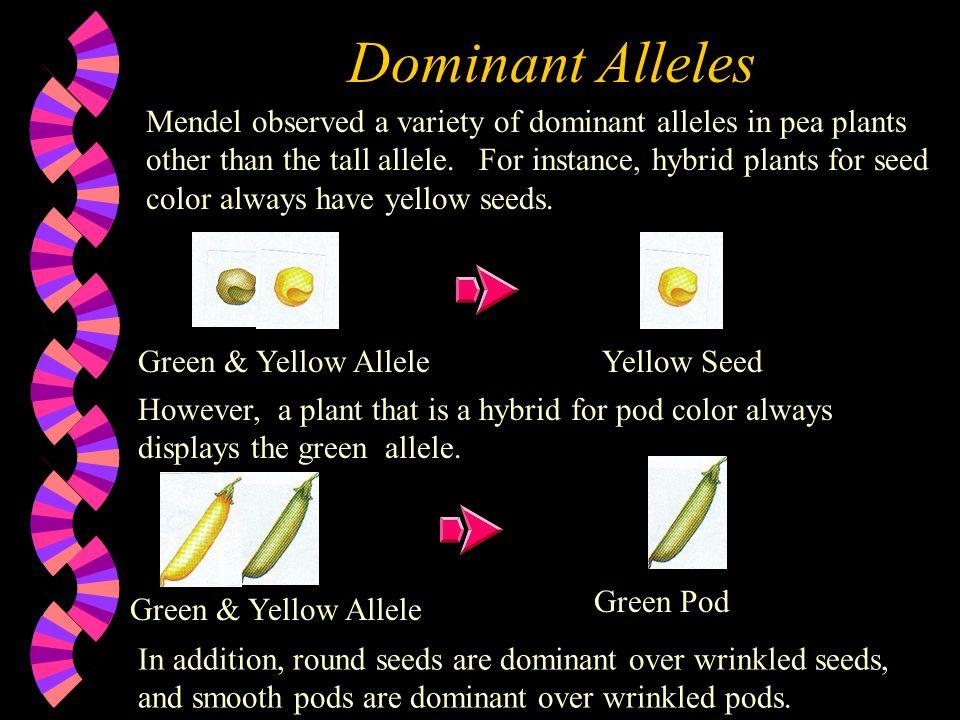 Dominant Alleles