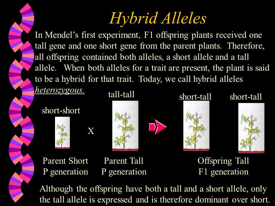 Hybrid Alleles