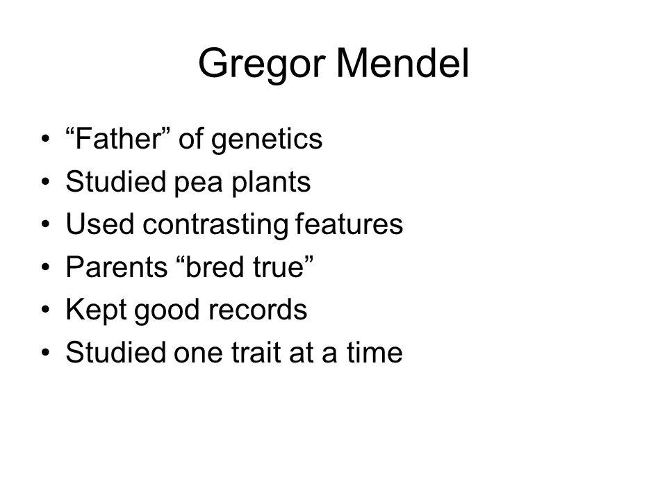 Gregor Mendel Father of genetics Studied pea plants